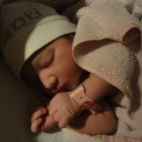 Ona acabada de néixer