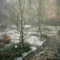 Primera nevada de l'any