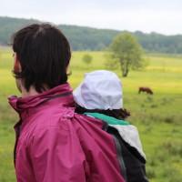 Mirant les vaques emo